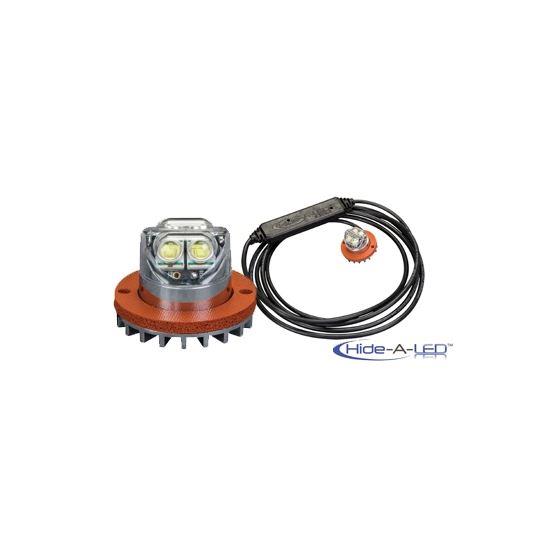 9011C 2-Bolt Hide-A-LED Clear Directional LED